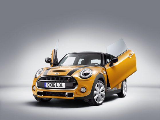 2018 Model Mini