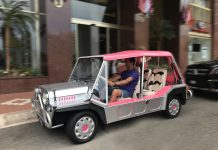 Mini Moke Görselleri