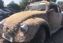 VW Furbie